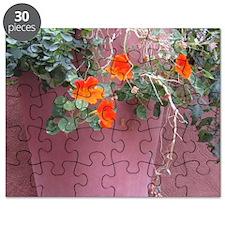 Orange And Adobe Nasturtium Puzzle