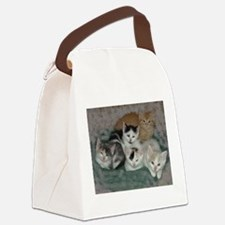 Lots of Kittens Canvas Lunch Bag