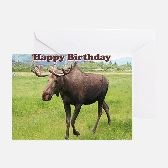 Wild will Greeting Card