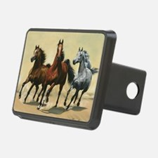 Funny Equestrian Hitch Cover
