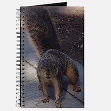 Squirrelin' Around Journal