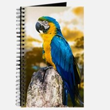 Beautiful Blue And Yellow Parrot Journal