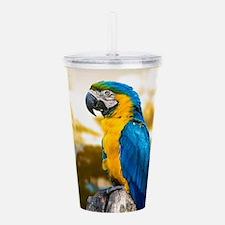 Beautiful Blue And Yellow Parrot Acrylic Double-wa