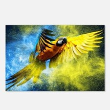 Beautiful Parrot Postcards (Package of 8)