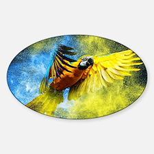 Beautiful Parrot Decal
