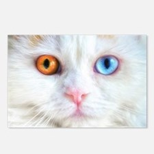 Odd-Eyed White Cat Postcards (Package of 8)