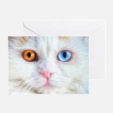 Odd-Eyed White Cat Greeting Card