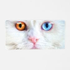 Odd-Eyed White Cat Aluminum License Plate