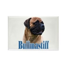 Bullmastiff(red)Name Rectangle Magnet