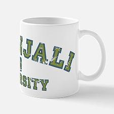 Green/Blue Patanjali University Mug