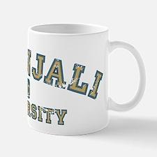 Blue/Yellow Patanjali University Mug