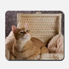 Loki In Basket 1 Mousepad