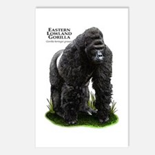 Eastern Lowland Gorilla Postcards (Package of 8)