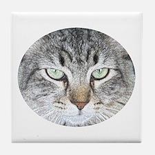 Feline Faces Tile Coaster