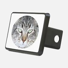 Feline Faces Hitch Cover