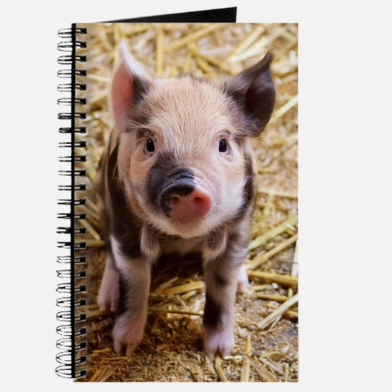 Cute Funny pig Journal