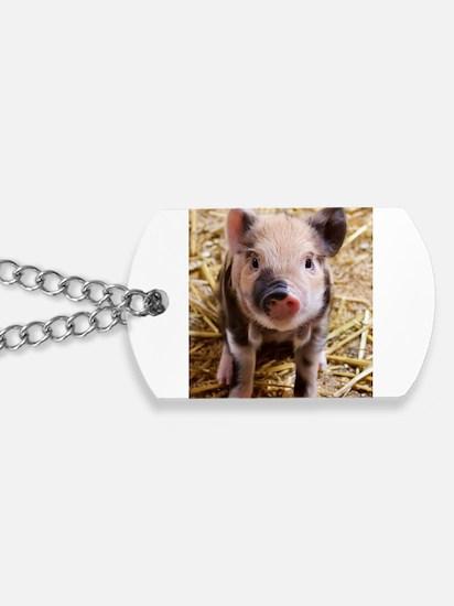 Unique Piggy Dog Tags
