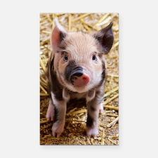 Cute Pig Rectangle Car Magnet