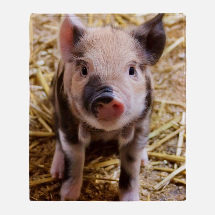 Cute Animal pig Throw Blanket