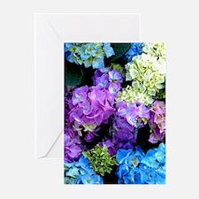Colorful Hydrangea Bush Greeting Cards