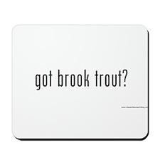 got brook trout? Mousepad