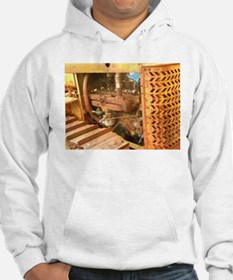 tractor up close Hoodie