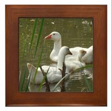Cute Ducks Framed Tile