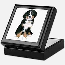 Bernese MD Puppy Keepsake Box