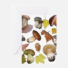 Boletus Greeting Cards
