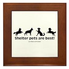 Shelter Dogs Framed Tile