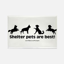 Shelter Dogs Rectangle Magnet