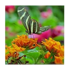 Striped Butterfly Tile Coaster