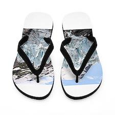 Portage Glacier, Alaska Flip Flops