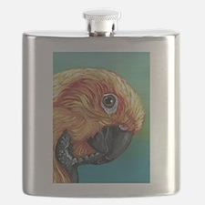 Sun Conure Parrot Flask