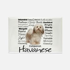 Havanese Traits Magnets