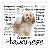 Havanese Square Car Magnets