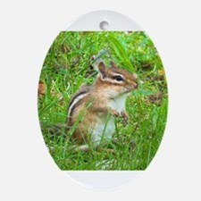 Chipmunk Oval Ornament
