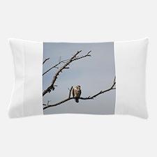 Peregrine Falcon Pillow Case