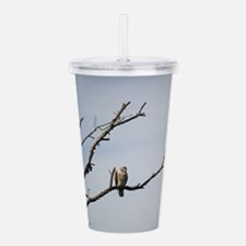 Peregrine Falcon Acrylic Double-wall Tumbler
