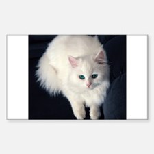 White Cat with Blue Eyes Decal