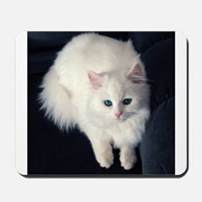 White Cat with Blue Eyes Mousepad