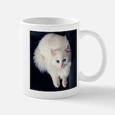 White Cat with Blue Eyes Mugs