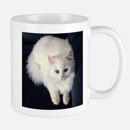 White Cat with Blue Eyes Mugs