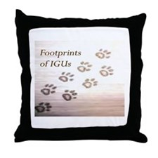 IGU Throw Pillow - Footprints of IGU