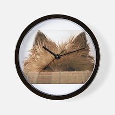 Peeking Boy Wall Clock