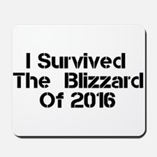 I Survived The Blizzard Of 2016 Mousepad