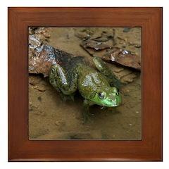 Bullfrog Framed Tile