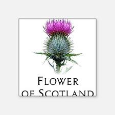 "Cute Scottish clan Square Sticker 3"" x 3"""
