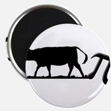 Cow Pie Magnets