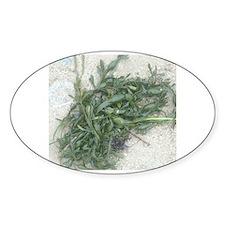 Unique Seaweed Decal